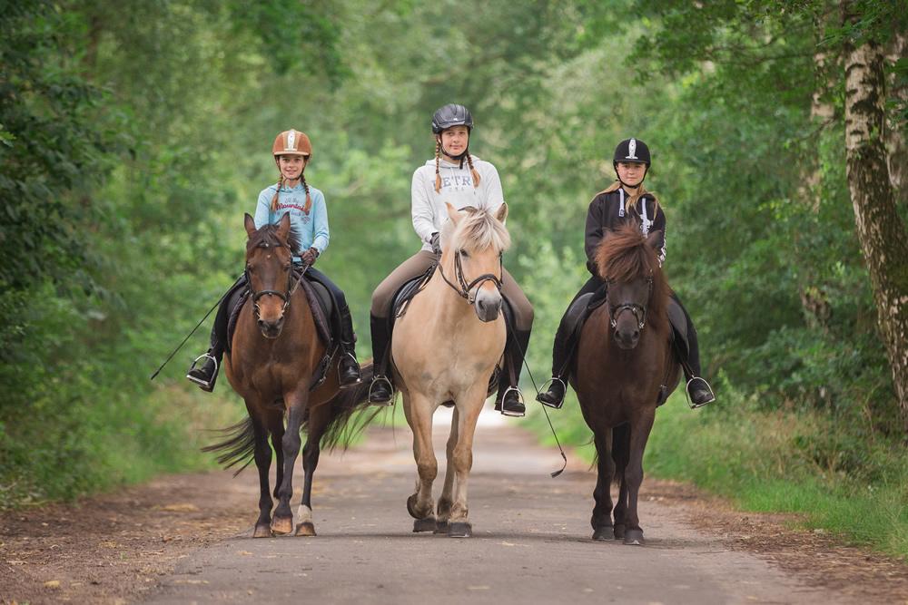 Pferdeshooting-Julia-Kolb-010